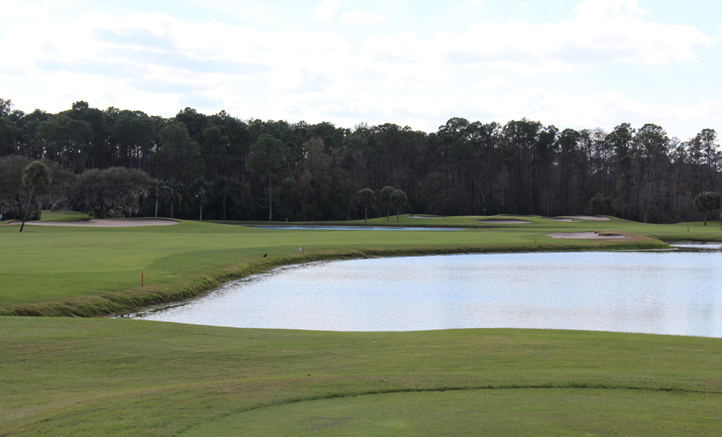 Disney Palm Golf Hole #14 Photo
