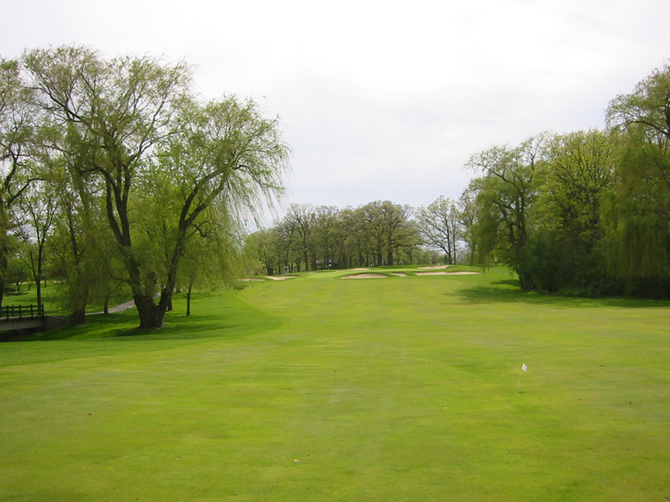 Cog Hill Hole #8 Picture