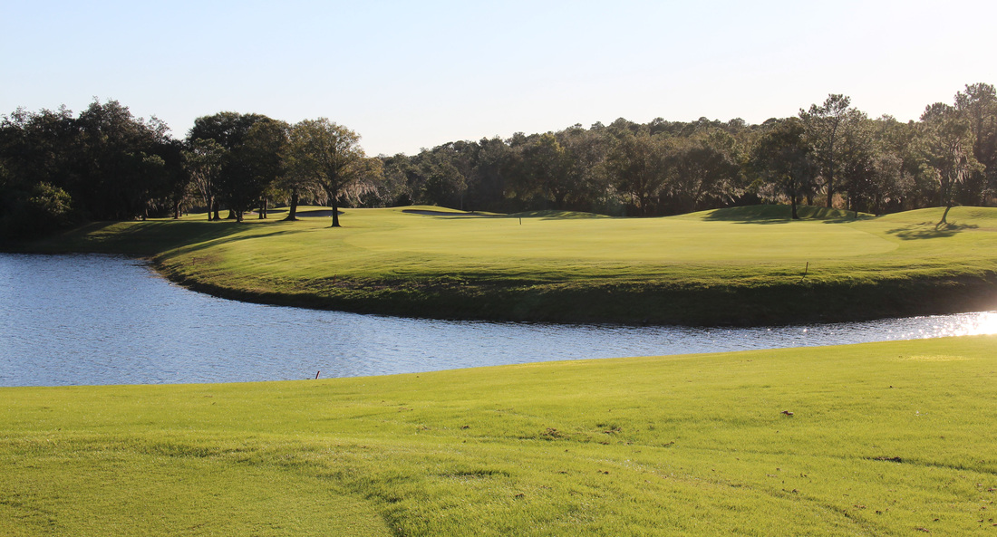 Orlando Golf Picture, Disney's Magnolia Golf Course #6 Photo