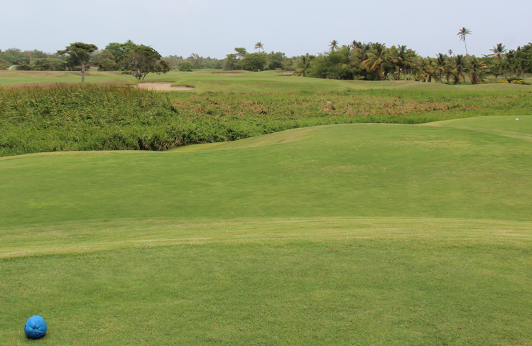 Puerto Rico Golf COurse Picture