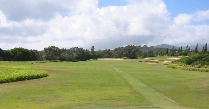 Maui Golf Picture, Plantation Course #14 Photo