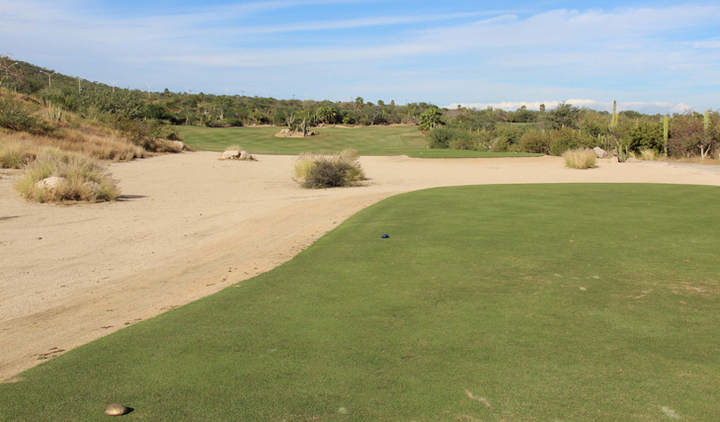 Cabo del Sol Hole #14 Golf Picture