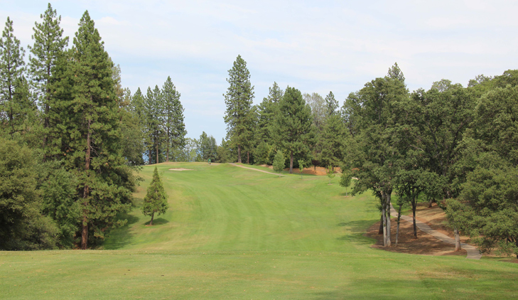 Pine Mountain Lake golf #8 Picture