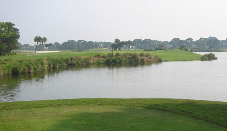 Sawgrass Country Club Golf #8 Photo