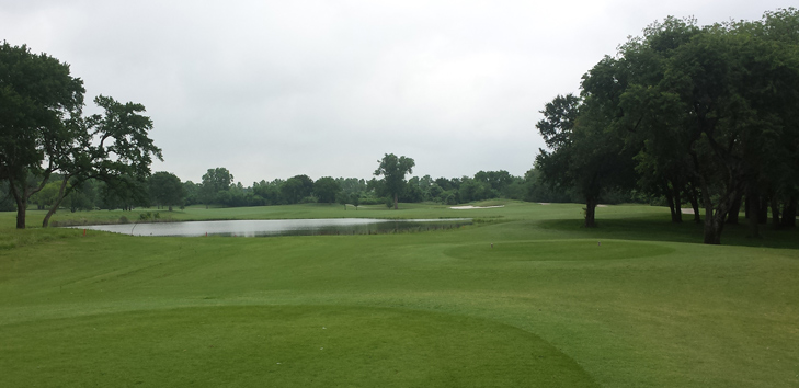 Grapevine Golf #9 Picture
