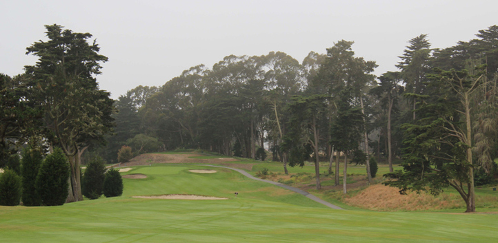 San Francisco Golf Picture, Presidio Golf Photo