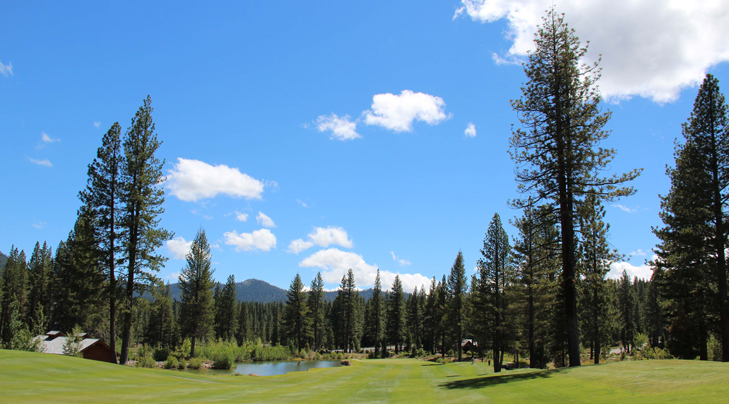 top reno golf photo, nevada golf review photo, reno golf review Picture, wolf run #15 photo
