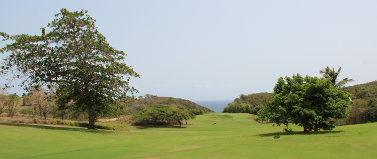 Royal Isabela Golf Course Review Picture