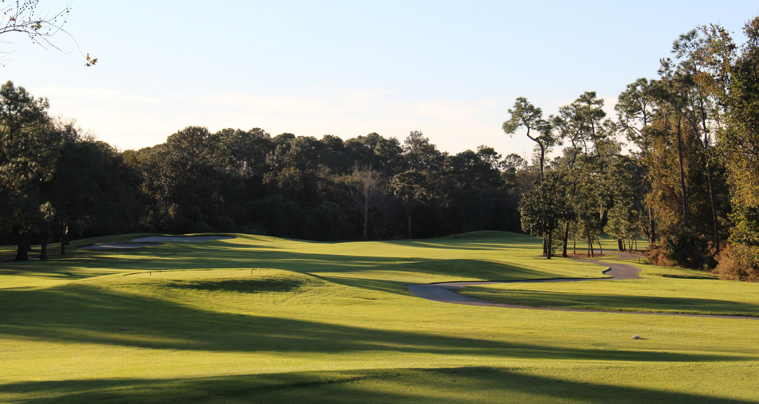 Orlando Golf Picture, Disney's Magnolia Golf Course #5 Photo