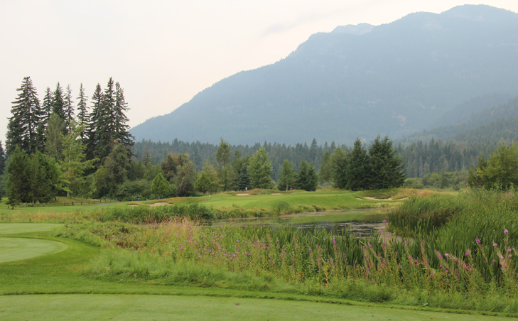 Whistler Golf Picture