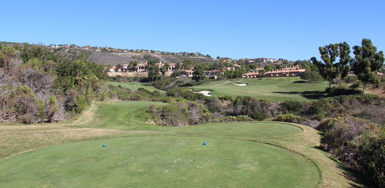 Pelican Hill Ocean Course Golf Picture