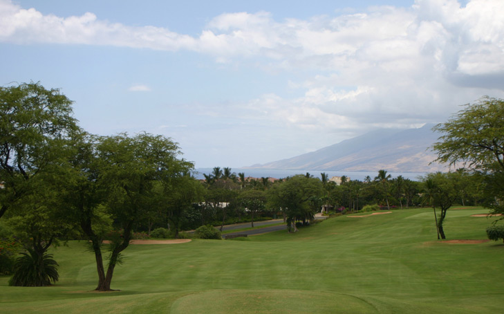Maui Golf Photo, Wailea Blue #5 Photo