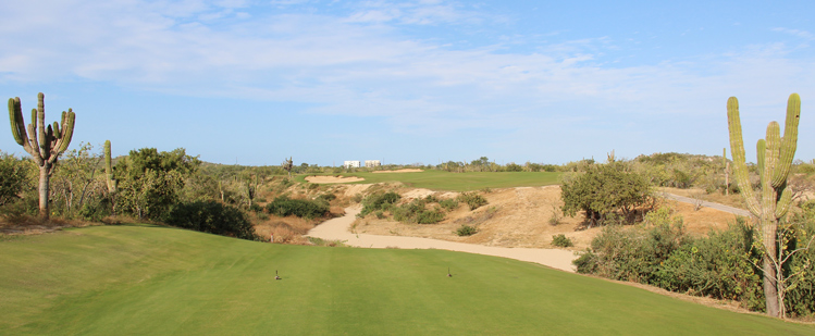 Diamante El Cardonal Golf Course Review Picture
