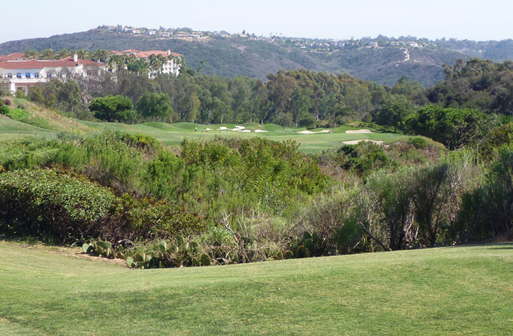 Aviara Golf Review Picture