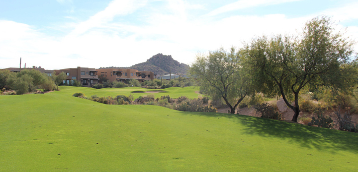 Troon North Monument Golf Hole #8 Photo