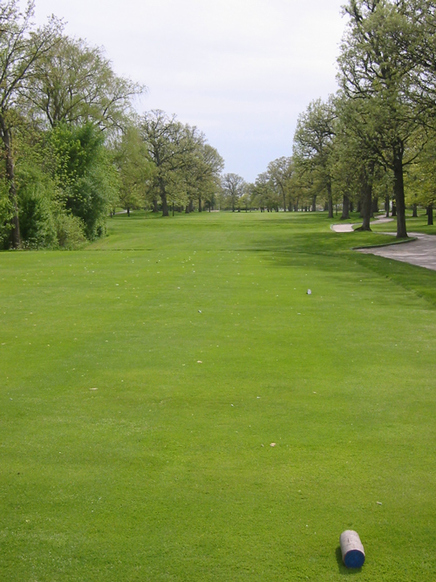 Top Illinois Golf Review Picture