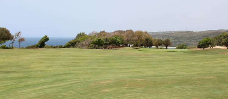 Royal Isabela #16 Picture