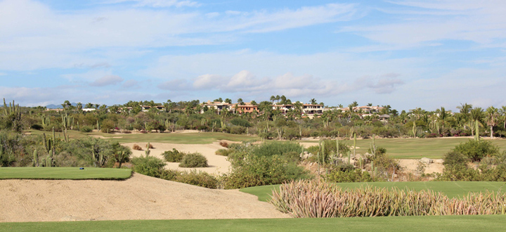 Cabo del Sol Golf Review Picture