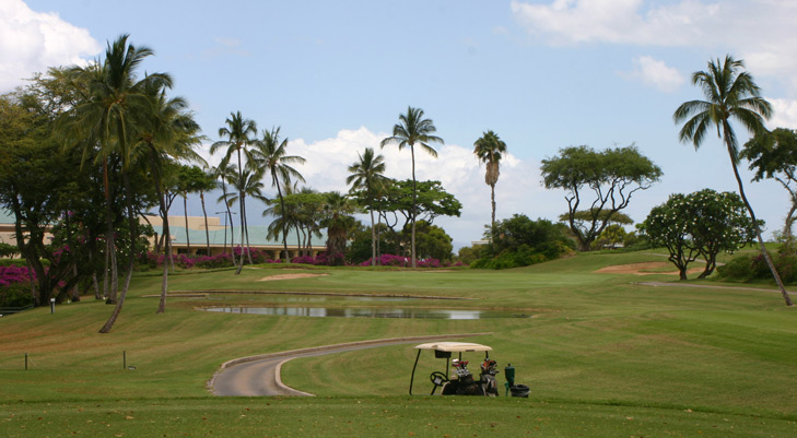 Maui Golf Photo, Wailea Blue #2 Photo