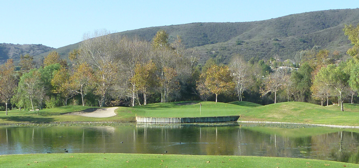 Twin Oaks Golf Review Picture