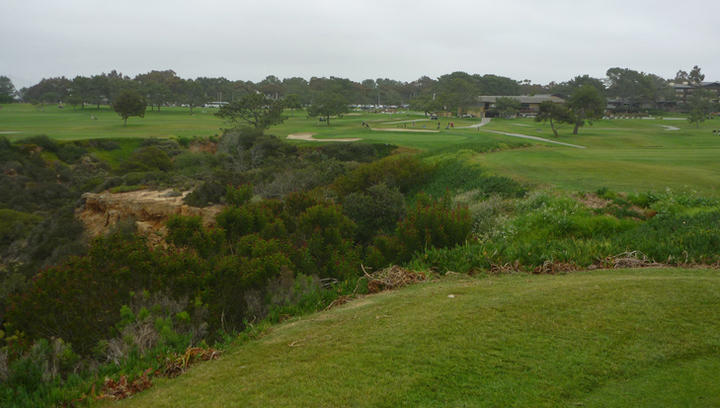 Torrey Pines Golf Review Picture