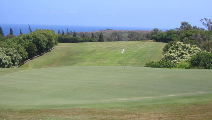 Maui Golf Picture, Plantation Course #15 Photo, plantation golf photo