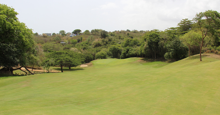Royal Isabela Golf Picture