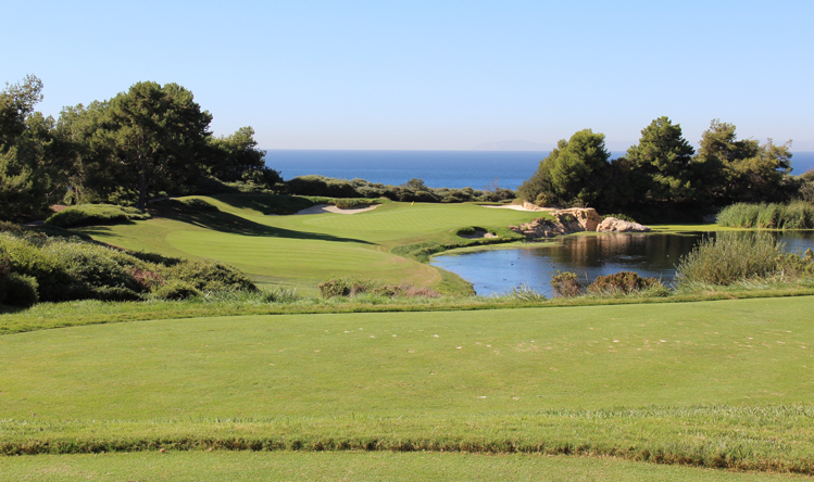 Pelican Hill South Golf Hole #7 Picture