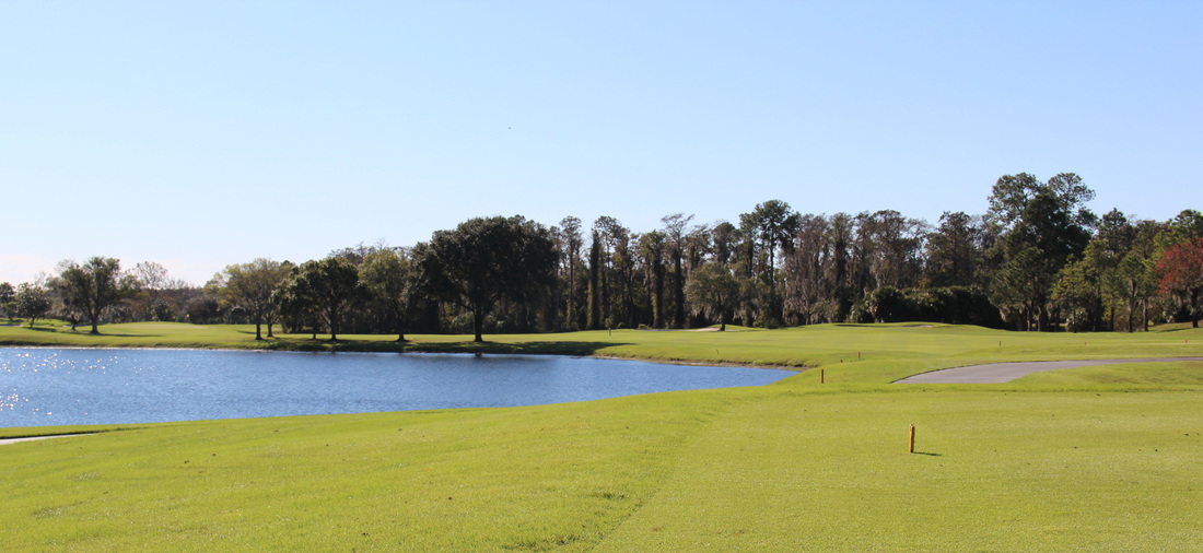 Orlando Golf Picture, Disney's Magnolia Golf Course #1 Photo