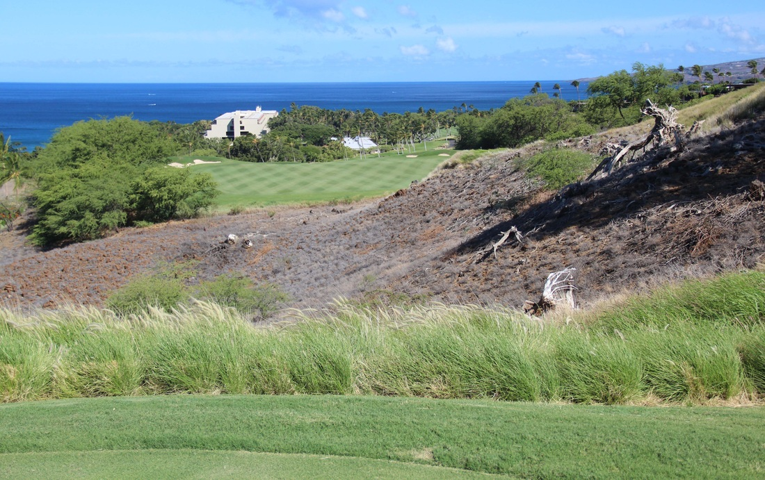 Hawaii Golf review Picture