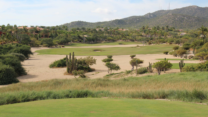 Cabo del Sol Ocean Hole #8 Golf Picture