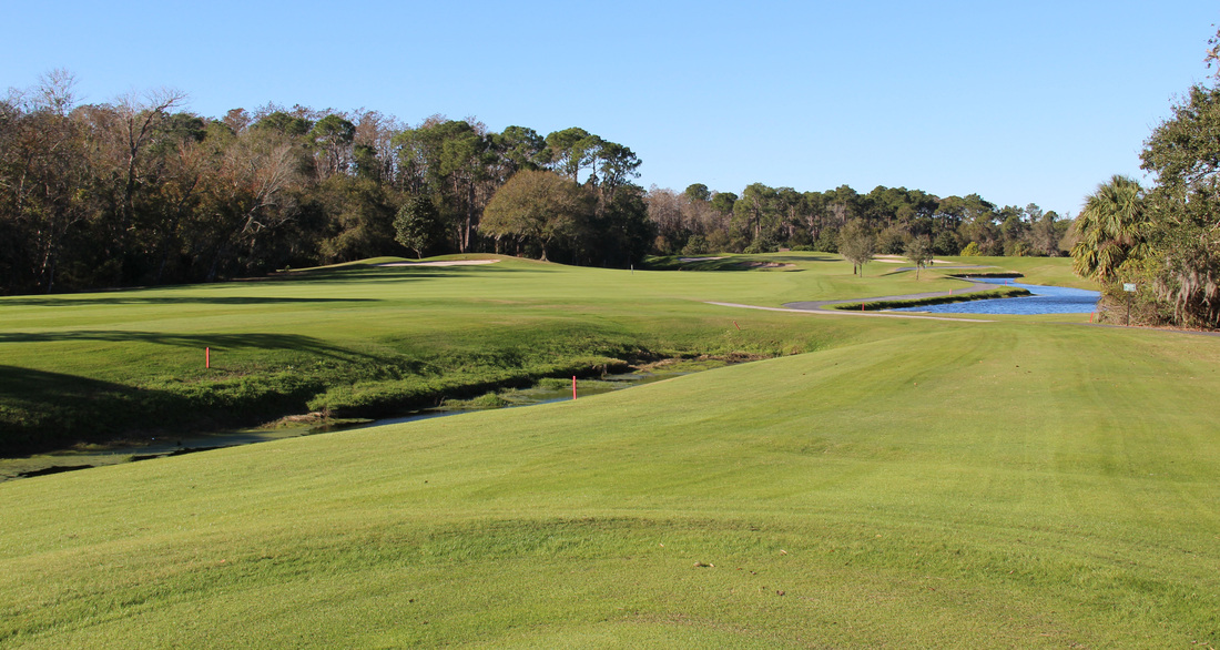 Orlando Golf Picture, Disney's Magnolia Golf Course #11 Photo