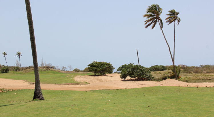 Royal Isabela Golf #13 Picture