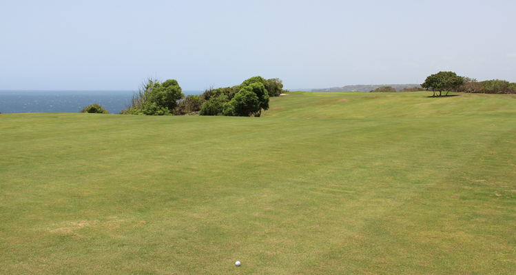 Royal Isabela Puerto Rico Golf Picture
