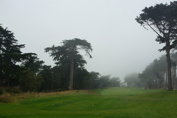 San Francisco Golf Picture, TPC Harding Park Photo