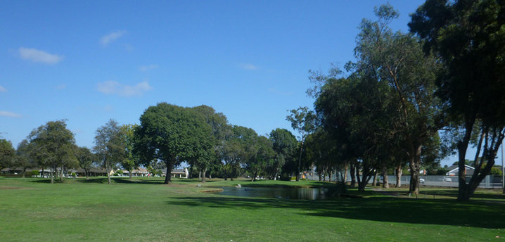 Meadowlark Golf Course Picture