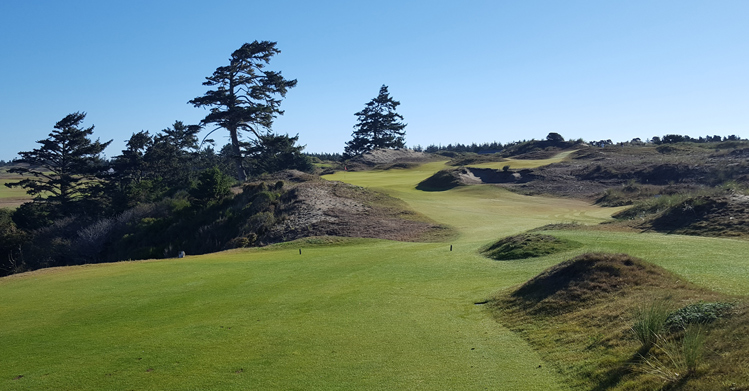 Bandon Dunes Resort Golf Picture