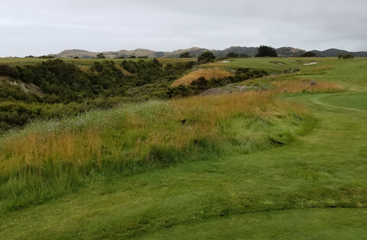 Cape Kidnappers Golf #11 Picture