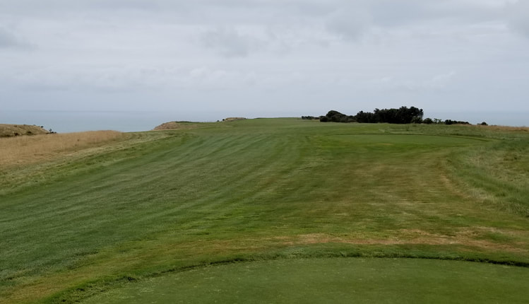 Cape Kidnappers Golf #15 Picture