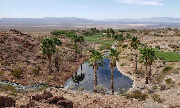 Vegas Oasis Golf Picture