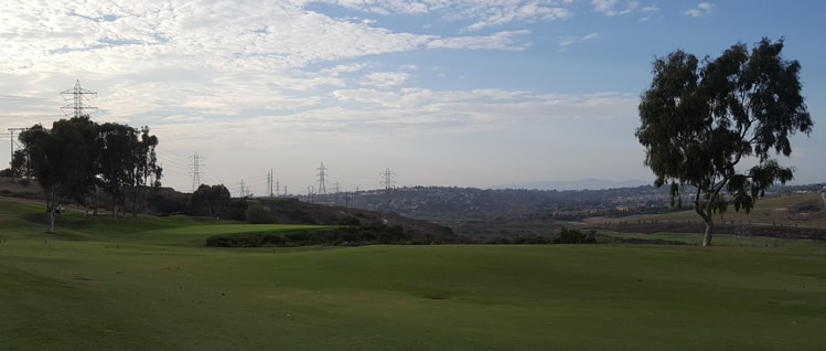 Top Carlsbad Golf Picture