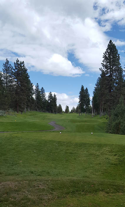 Top Oregon Golf Picture