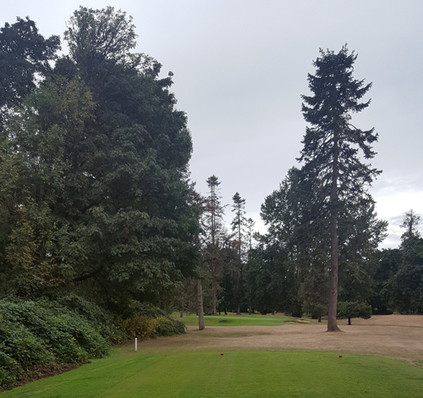 Golf Club of Oregon Course Review Picture