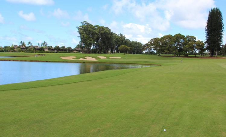 Kauai Golf Review Picture