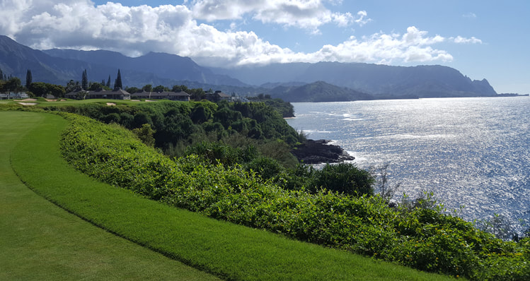 top hawaii golf Picture