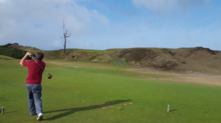 Bandon Dunes Golf Picture