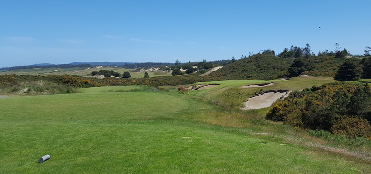 Pacific Dunes Golf Hole 17 Picture