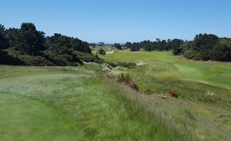 Pacific Dunes Finishing Golf Hole Picture