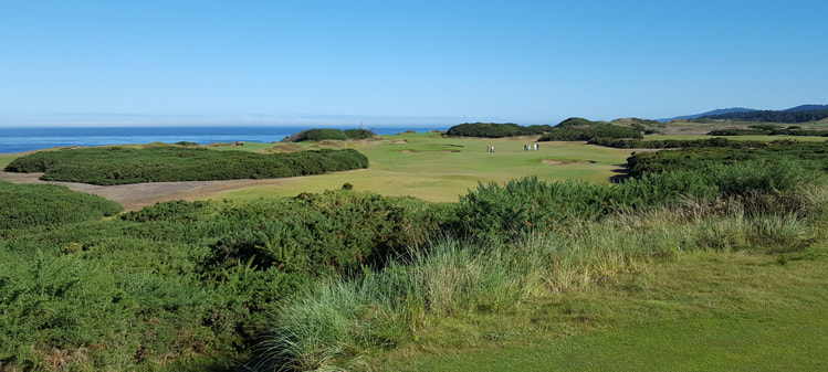 Pacific Dunes Golf Course Picture