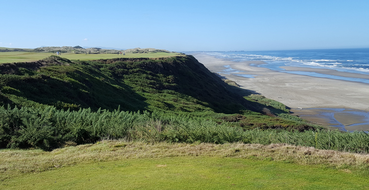 Pacific Dunes Golf Picture
